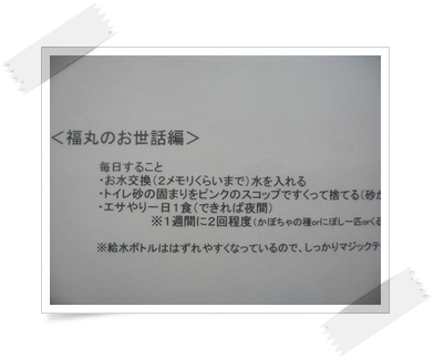 Dc032017